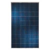 Поликристаллический фотомодуль 265W C&T Solar СT60265-P